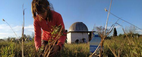 Plantacion Observatorio San Miguel