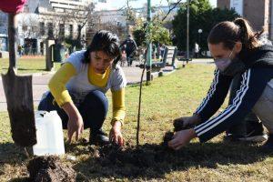 Plantacion Quinquela Martin (6)